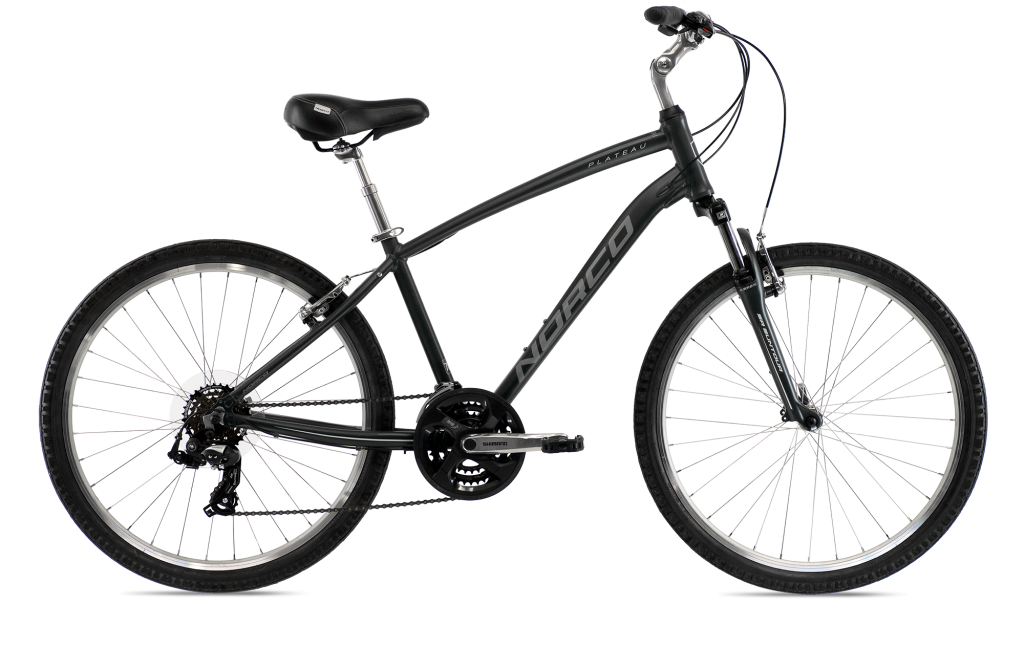 Rent a comfort mountain bike!